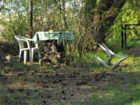 14.-der-vergessene-Garten