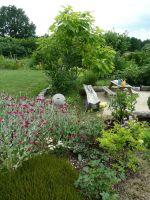 24.-Nicht-nur-im-Garten-wird-gebuddelt