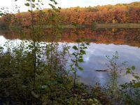 28.-Goldener-Herbst-am-Gohlitzsee