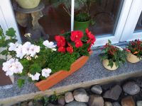 30.-Buga-Gruee-im-eigenen-Garten