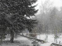 6.-Wintergarten