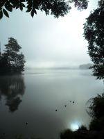 01.-graue-Nebel-wallen
